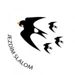 ODZNAKY_slalom